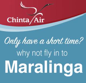 Chinta Air Flights ad